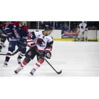 Corpus Christi IceRays forward Matthew Headland