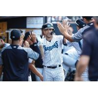 Giancarlo Stanton receives congratulations in the Tampa Tarpons dugout