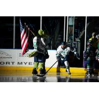 Florida Everblades forward Michael Neville enters the ice