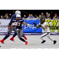 Sioux Falls Storm running back Calen Campbell gains yards against the Tucson Sugar Skulls