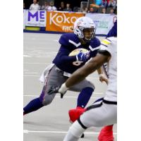 Sioux Falls Storm quarterback Lorenzo Brown looks for room against the Tucson Sugar Skulls