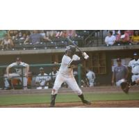 Frederick Cuevas drove in the only Charleston RiverDogs run and reached base twice in Sunday evening's defeat