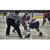 Evansville Thunderbolts faceoff