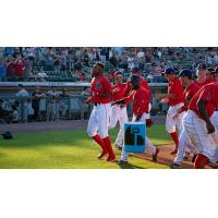 Marino Campana and the Lowell Spinners celebrate
