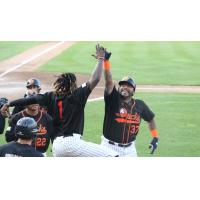 Long Island Ducks celebrate a Hector Sanchez home run