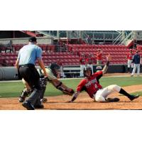 Brice Turang of the Carolina Mudcats slides safely home