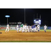 Lexington Legends celebrate a walk-off win