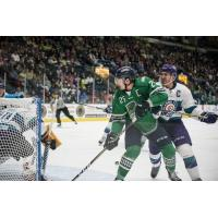Florida Everblades forward John McCarron