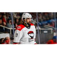 Zack Stortini with the Charlotte Checkers