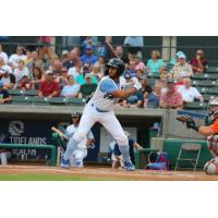 D.J. Artis of the Myrtle Beach Pelicans