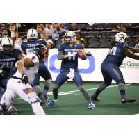 Baltimore Brigade quarterback Shane Morris against the Albany Empire