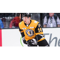 Forward Cedric Lacroix with the Wheeling Nailers