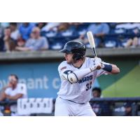 Travis Blankenhorn of the Pensacola Blue Wahoos