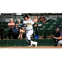 Keinner Pina of the Burlington Bees