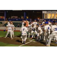 Green Bay Booyah celebrate a walk-off win