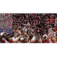 Jacksonville Sharks celebrate winning the NAL title