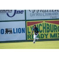 Oscar Gonzalez with the Lynchburg Hillcats