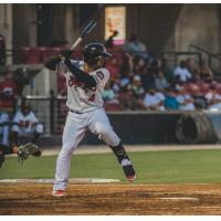 Mario Feliciano of the Carolina Mudcats