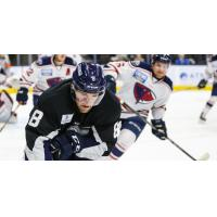 Forward Cam Maclise with the Jacksonville Icemen