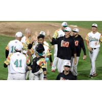 Los Patos de Long Island (Long Island Ducks) celebrate a win