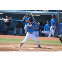 Hudson Valley Renegades at the plate