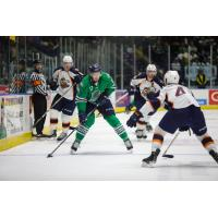 Florida Everblades forward Justin Auger
