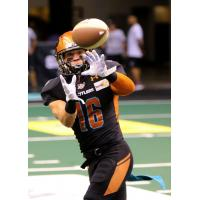 Arizona Rattlers wide receiver Jarrod Harrington