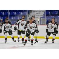 Centre Justin Sourdif and the Vancouver Giants