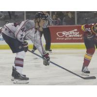 Defenseman Nick Wright with the Evansville Thunderbolts