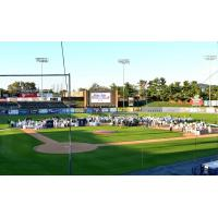 Dinner Under the Stars at America's Classic Ballpark, home of the Reading Fightin Phils