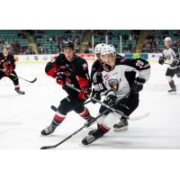Vancouver Giants right wing Lukas Svejkovsky (right) against the Prince George Cougars