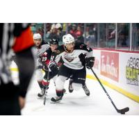 Vancouver Giants defenceman Alex Kannok Leipert vs. the Prince George Cougars