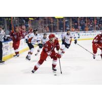 Forward Chase Lang with the Allen Americans