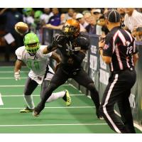 Arizona Rattlers wide receiver Jamal Miles