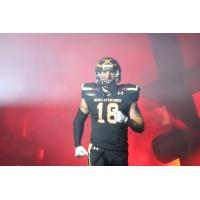 Iowa Barnstormers wide receiver Connor Hollenbeck