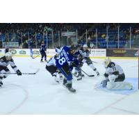 Charlie DesRoches of the Saint John Sea Dogs takes a shot against the Charlottetown Islanders
