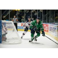 Florida Everblades forward Blake Winiecki vs. the Norfolk Admirals