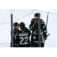 Utah Grizzlies huddle