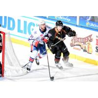 Cleveland Monsters vs. the Rochester Americans
