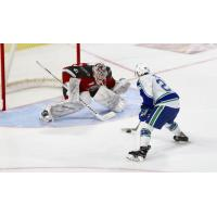 Vancouver Giants goaltender Trent Miner faces the Swift Current Broncos in a shootout