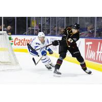 Cleveland Monsters defenseman Gabriel Carlsson vs. the Toronto Marlies