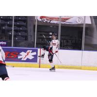 Amarillo Bulls forward David Hill