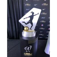 The National Women's Soccer League Championship trophy