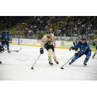 Florida Everblades right wing Justin Auger vs. the Jacksonville IceMen