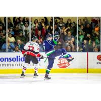 Jake Elmer of the Maine Mariners celebrates a goal