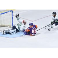 Florida Everblades goaltender Cam Johnson lays out for a save against the Orlando Solar Bears