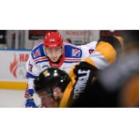 Kitchener Rangers face off with the Kingston Frontenacs