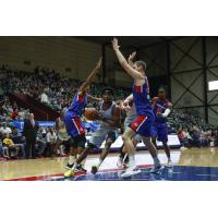 Grand Rapids Drive defend against the Greensboro Swarm