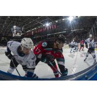 Kelowna Rockets centre Alex Swetlikoff (right) against the Victoria Royals