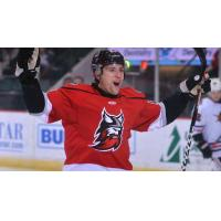 Adirondack Thunder celebrate a goal against the Indy Fuel